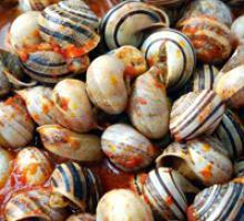 Cuzzedde (snails)