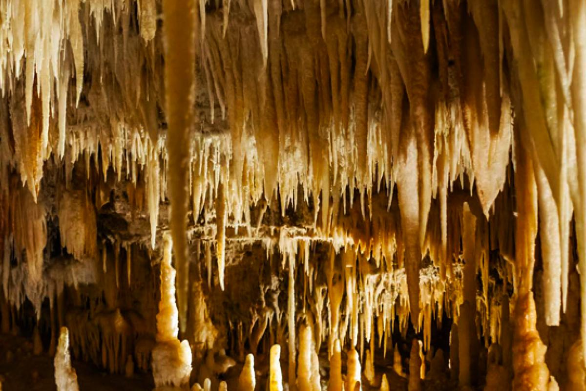 Castellana Grotte Caves